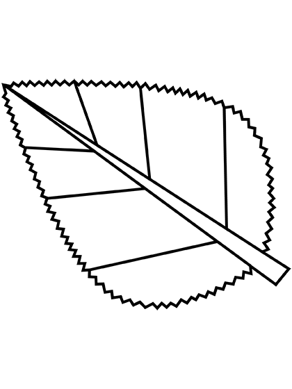 Модал